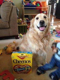 Cheerios!!